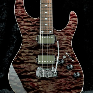 Order Style - Pickguardless & Covered Humbucker - HH  (Premium Grade Maple Top - KKY)